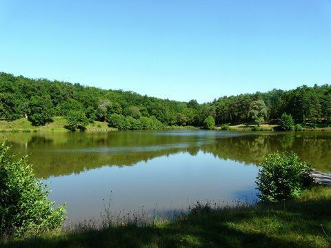 Périgord Blanc – Huizen zonder zwembad